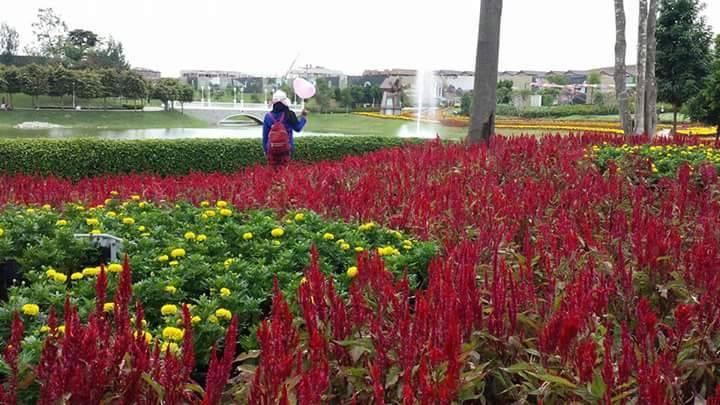 Pameran Bunga di Eco Majestic Semenyih