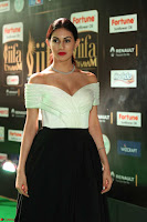 Amyra Dastur in Off Shoulder Deep neck  at IIFA Utsavam Awards 2017  Day 2 at  06.JPG