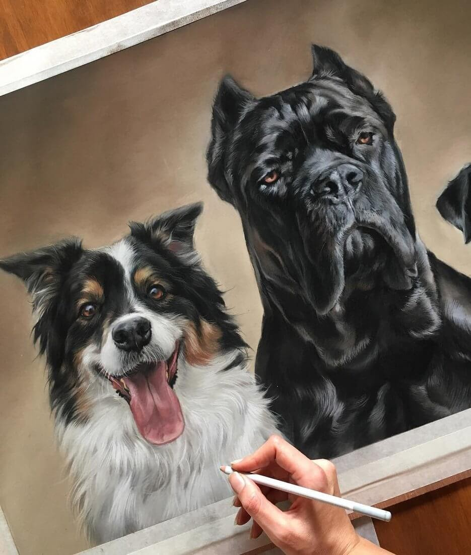 12-Roxy-and-Kane-Patricia-Otero-Cats-and-Dogs-Portrait-Artist-www-designstack-co