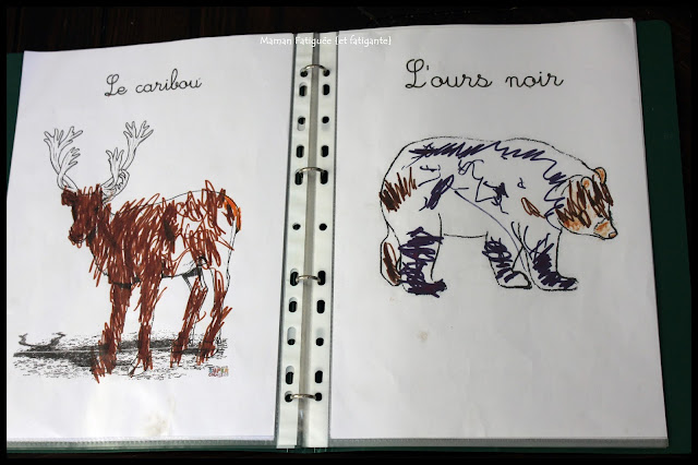 coloriage animaux amerique nord ours caribou