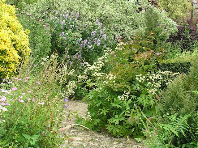 ogród Margery Fish,naturalistyczny ogród