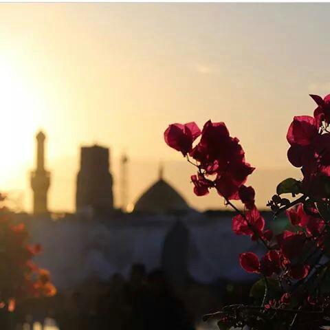 صور بغداد