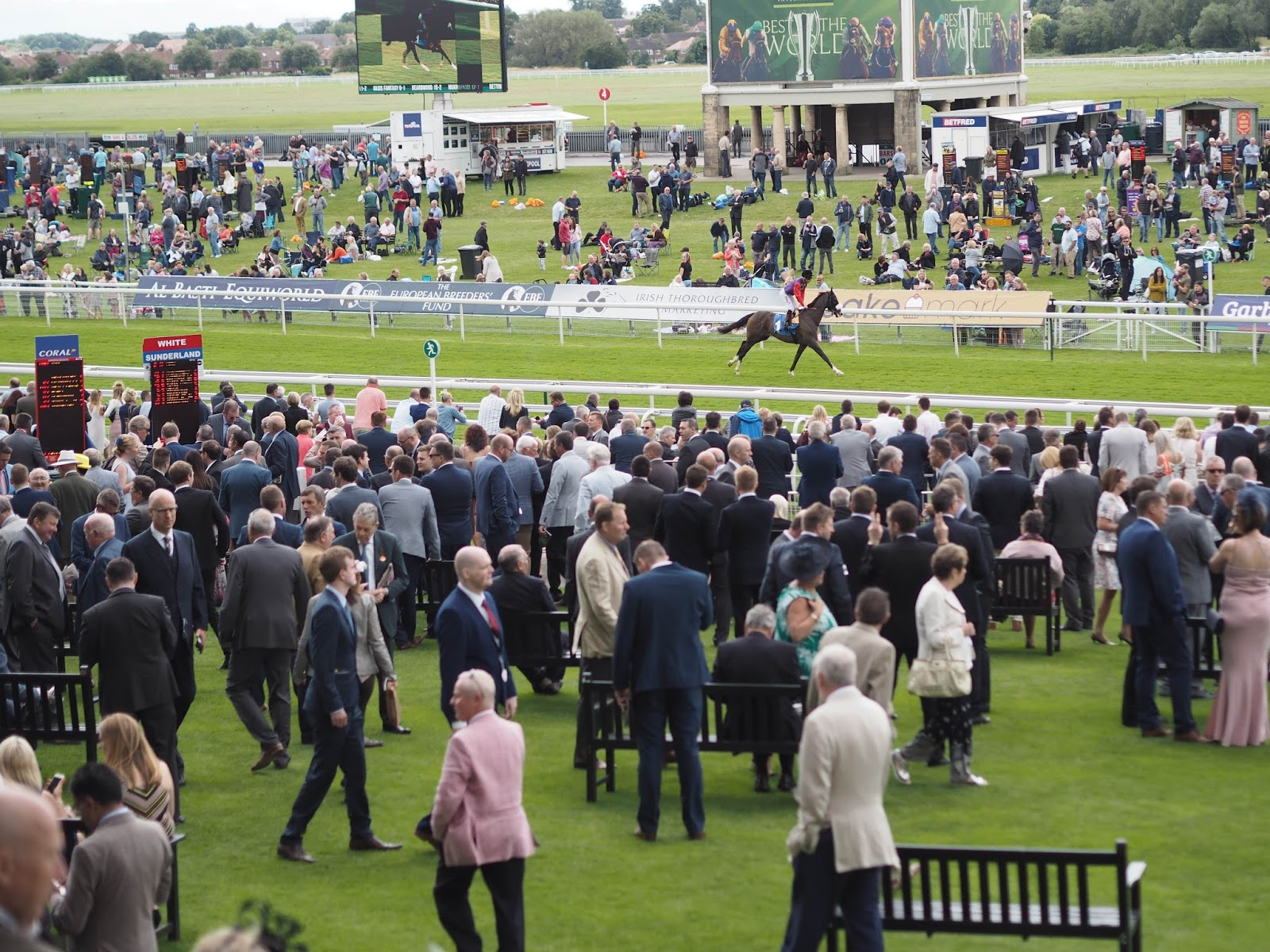 York Races