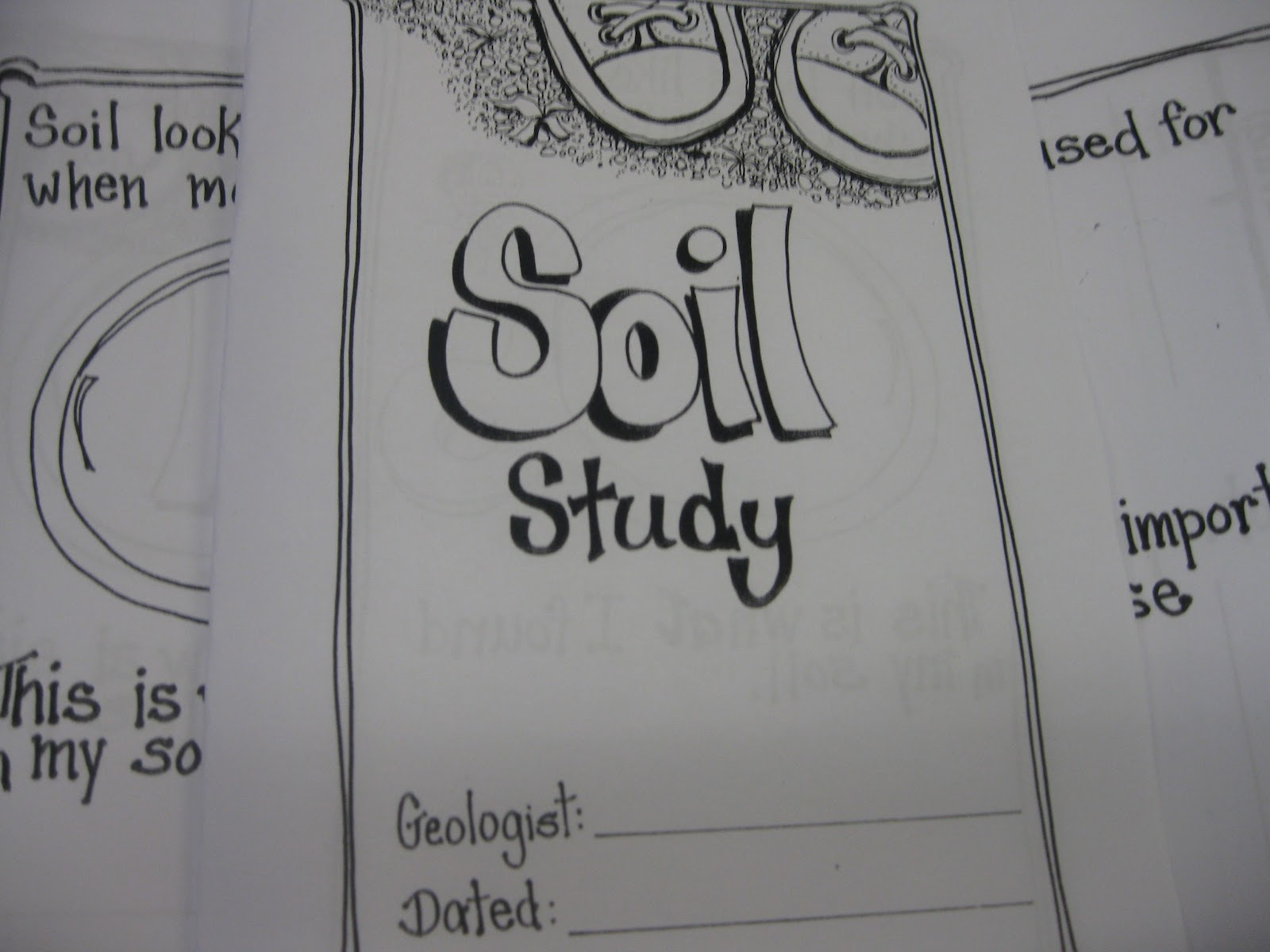 Third Grade Thinkers Science Investigation A Soil Study