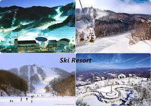 Wisata Winter Korea