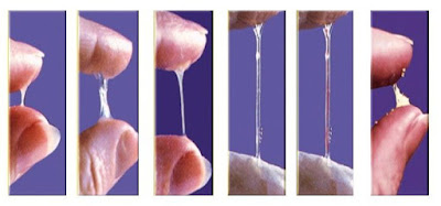 Menelan Semen (Air Mani) dan Potensi Bahayanya