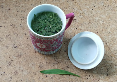 Spitzwegerich-Tee