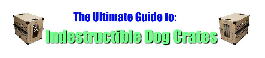 Ultimate Guide to Indestructible Dog Crates