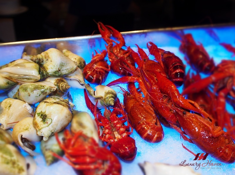 spices cafe harvest of sea buffet crawfish review