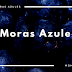 Moras Azules o Arandanos