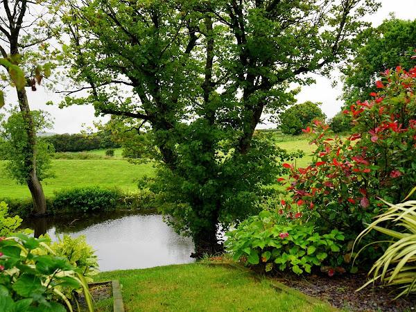 How Green Is Your Garden
