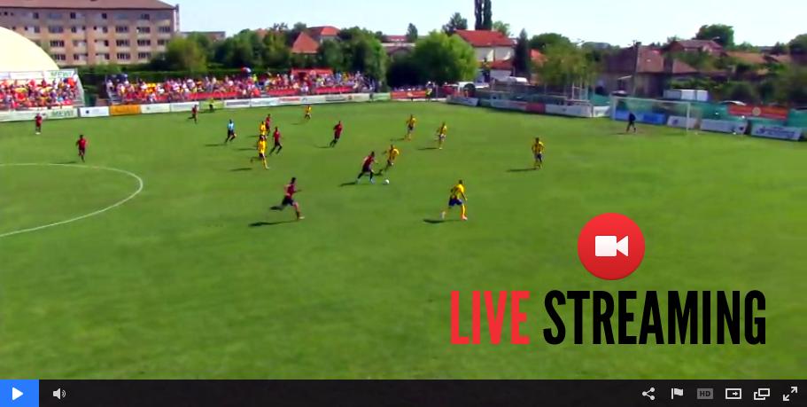 LIVE VIDEO: Ripensia Timisoara 2-0 Sportul Snagov - ora 11.00