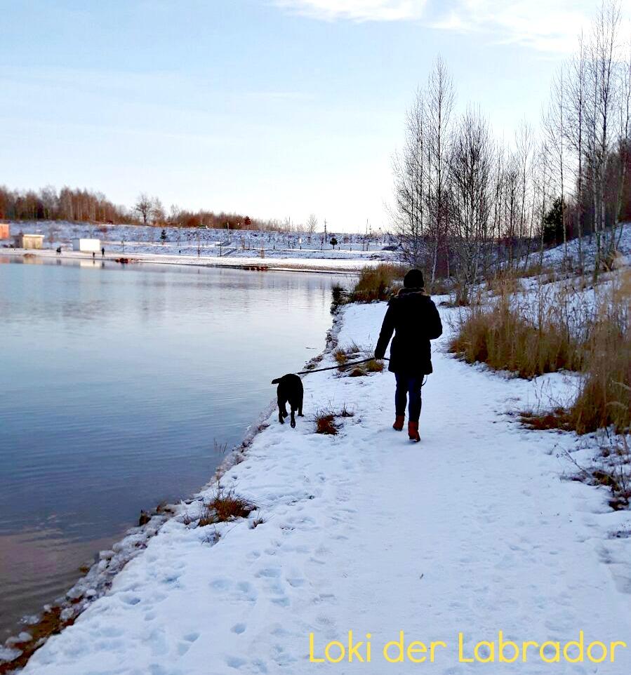 Loki Wanderung Cospudener See