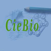 Questões de Biologia sobre o Desenvolvimento Embrionário, Embriologia