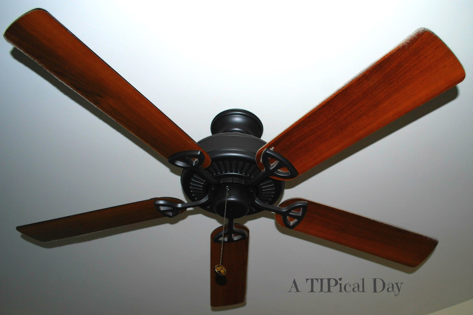 A TIPical Day: Cleaning Ceiling Fans