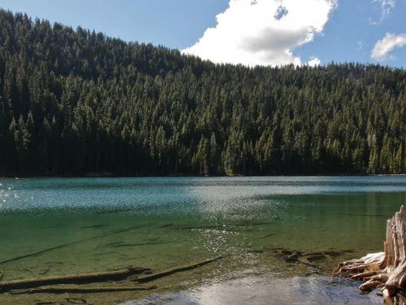 summit lake milf women Backpage seizure.