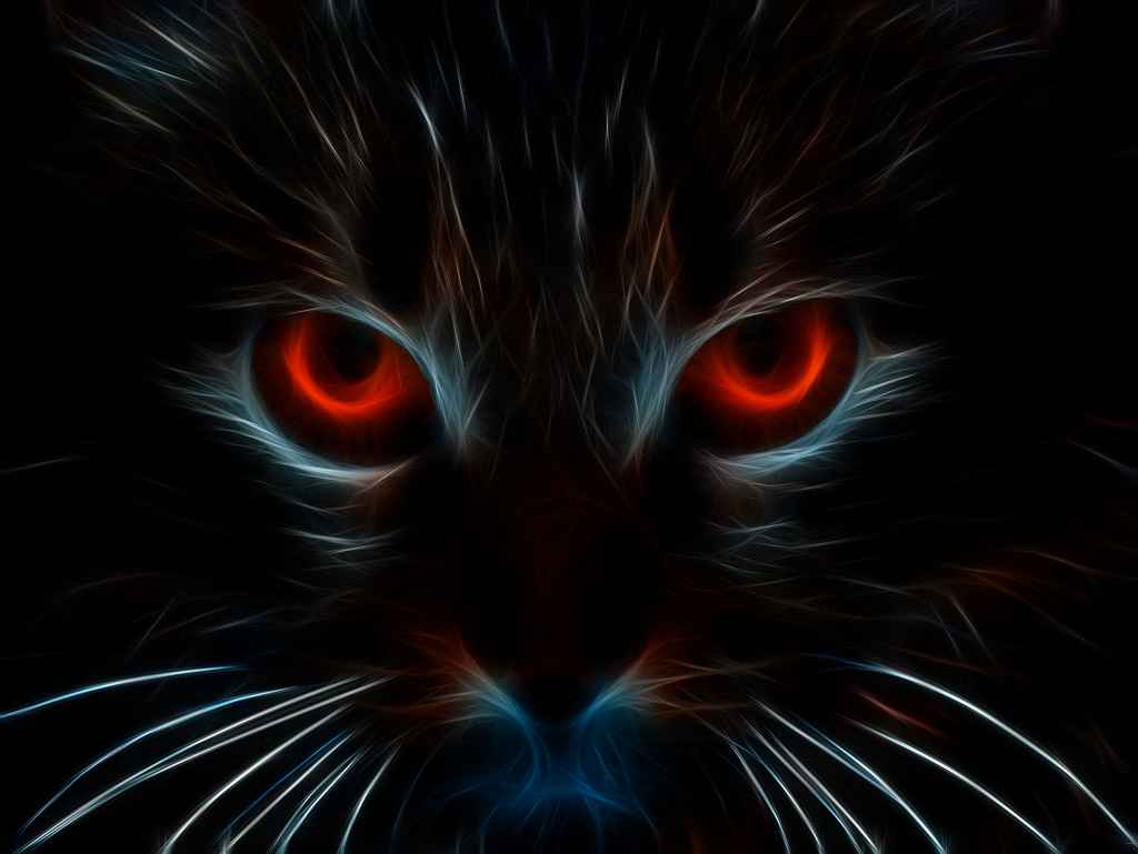 Black Kittens With Red Eyes