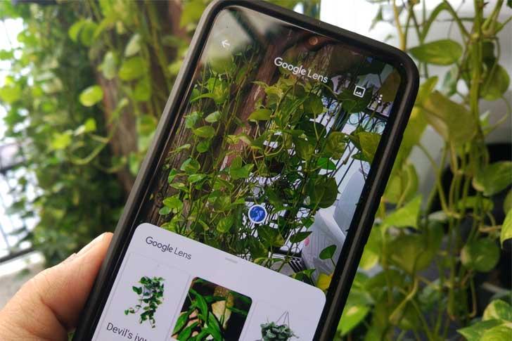 apa google lens dan bagaimana cara kerjanya