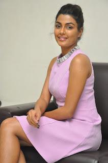 anisha ambrose okkadu migiladu interview stills 04