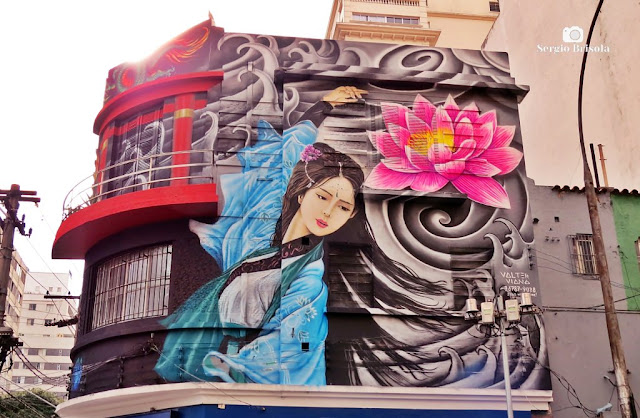Vista ampla de Grafite pintado em casarão da Rua Augusta - Cerqueira César - São Paulo