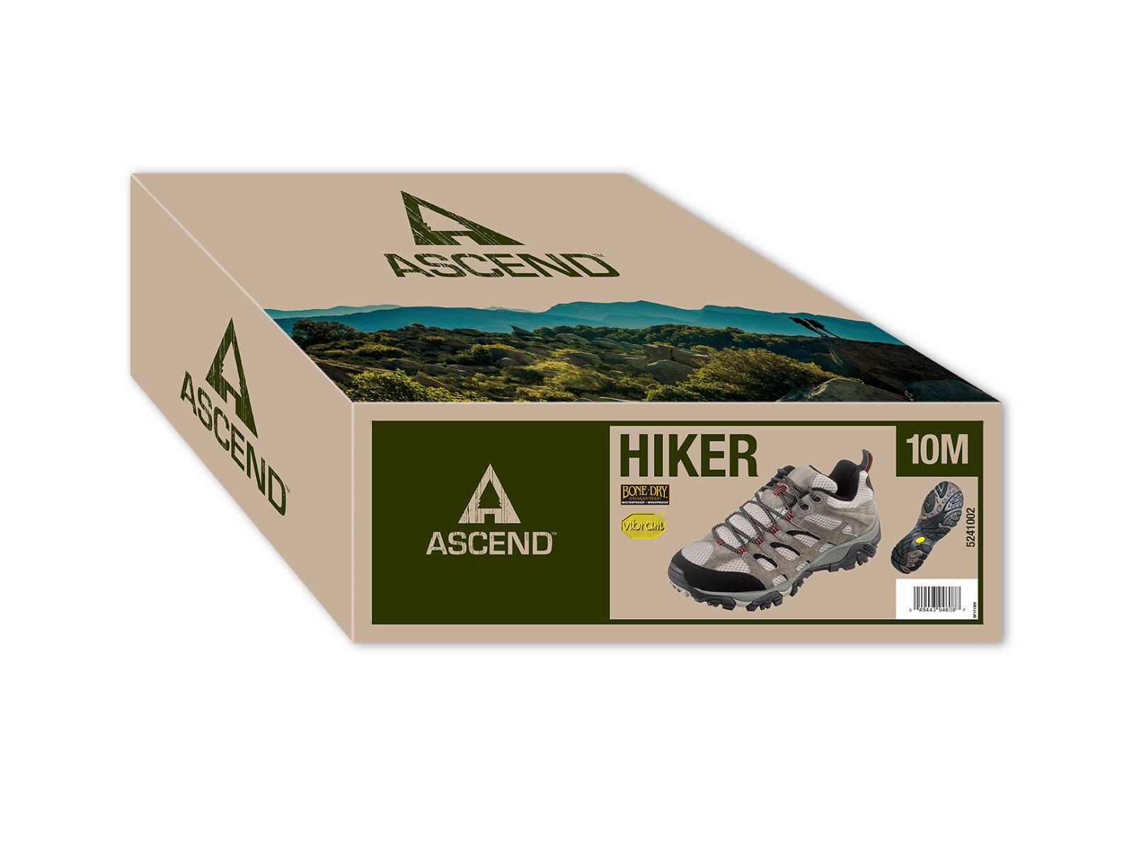 Ascend Hiking Shoes