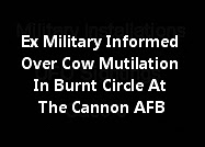 Cannon AFB - UFOs, Burned Circles And Cow Found Mutilated.