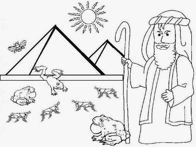 El Renuevo De Jehova: Las Diez Plagas - Imagenes para colorear ...