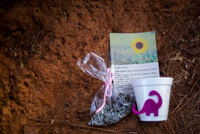 Aniversário Tema Dinossauro - Meninas - DIY - Belo Horizonte - festa no parque - lembrancinha ecológica - semente de girassol