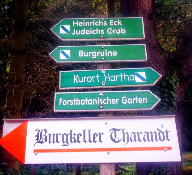 Ausflugsziel in Dresdens Umgebung
