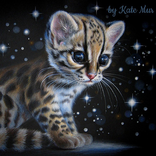 08-Kitten-Kate-Mur-Fantasy-and-Realism-in-Paintings-and-drawings-of-animals-www-designstack-co