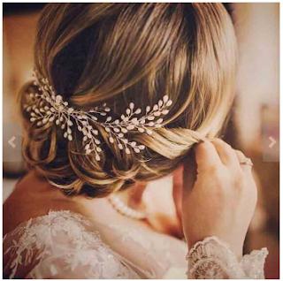 hairslide accessories