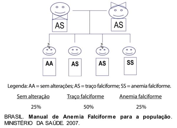 Manual de anemia faciforme para a população