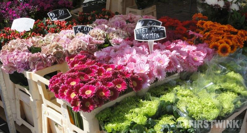 flower market Rotterdam Netherlands