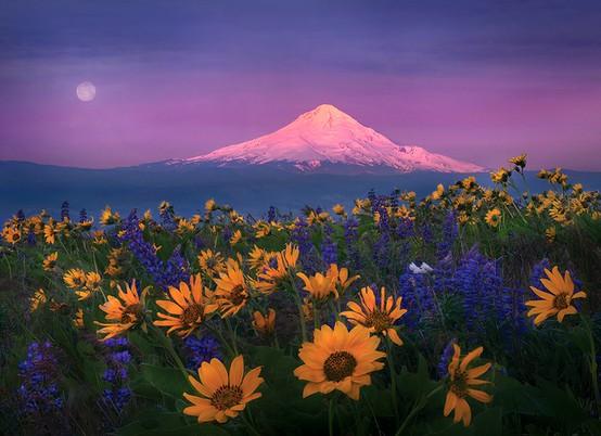 LA FOTO DEL DIA Columbia Hills, Washington State, USA 1