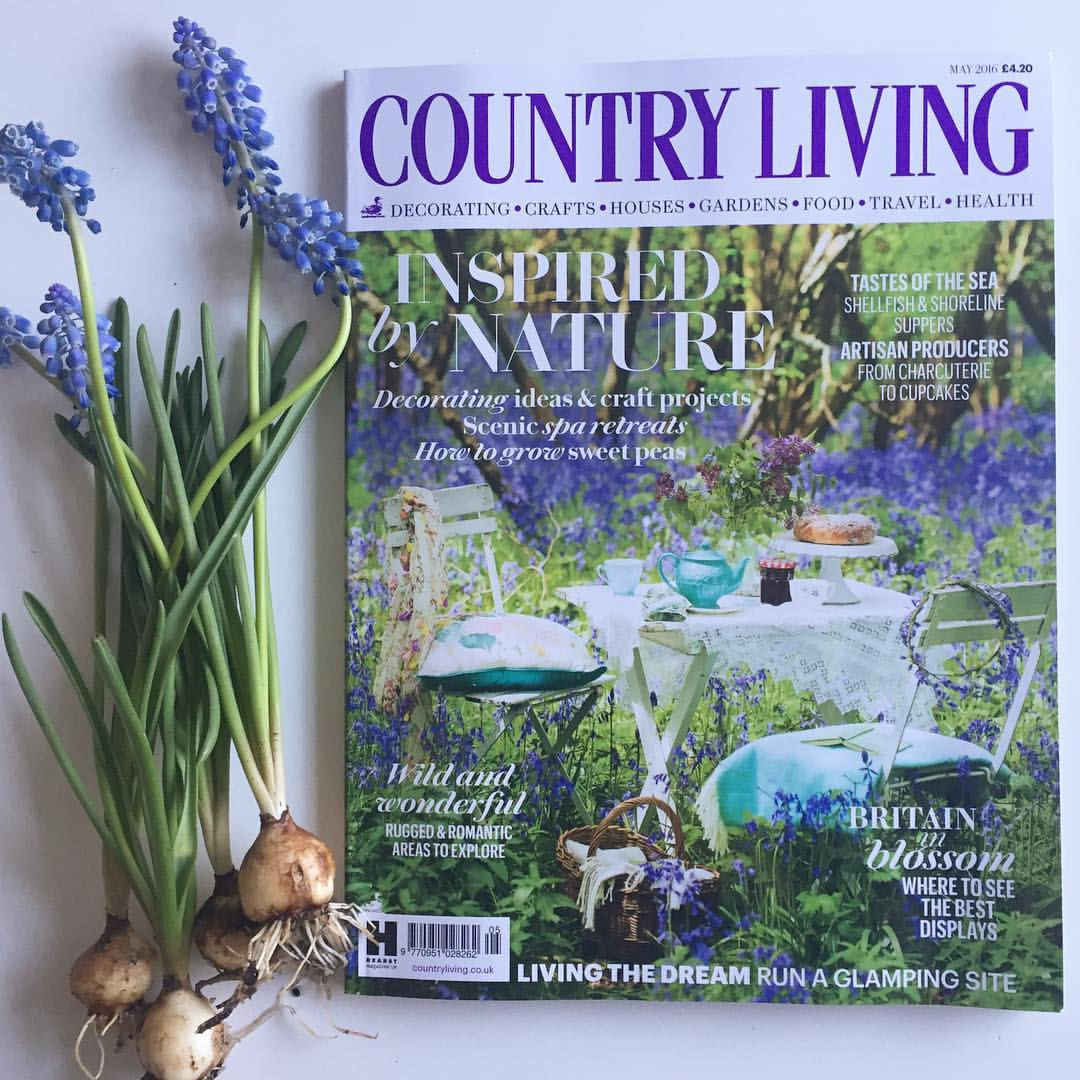 Selina lake april bluebells for Country living sweepstakes april 2016