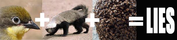 badger and honey guide bird relationship