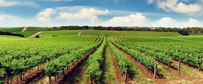 Tentang Kami : Info Investasi Tanah Joga Terupdate dan terdepan