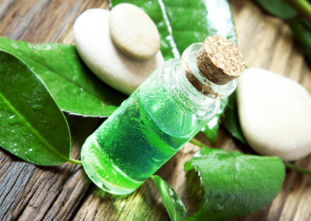 tree oil for beauty