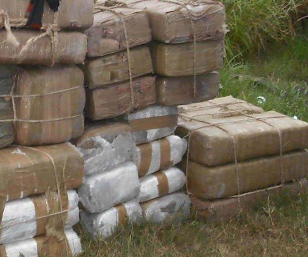 La Border Patrol le tumban a cártel cargamento de marihuana con valor de 800 mil dolares