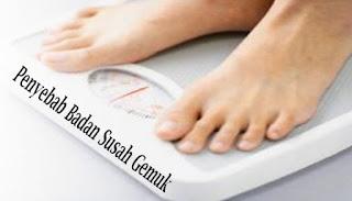 Penyebab Badan Susah Gemuk
