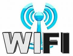 LizardSystems Wi-Fi Scanner Portable