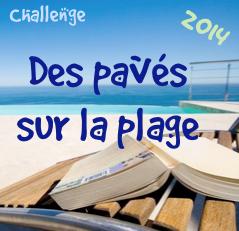 http://andree-la-papivore.blogspot.fr/2014/05/challenge-des-paves-sur-la-plage-2014.html