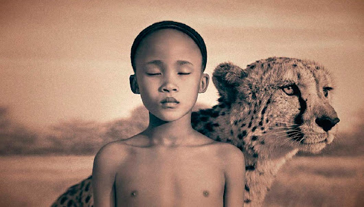 Comentario Ashes and Snow de Gregory Colbert