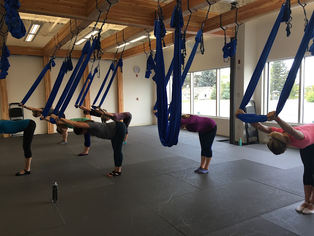 AntiGravity® Fitness What to Expect