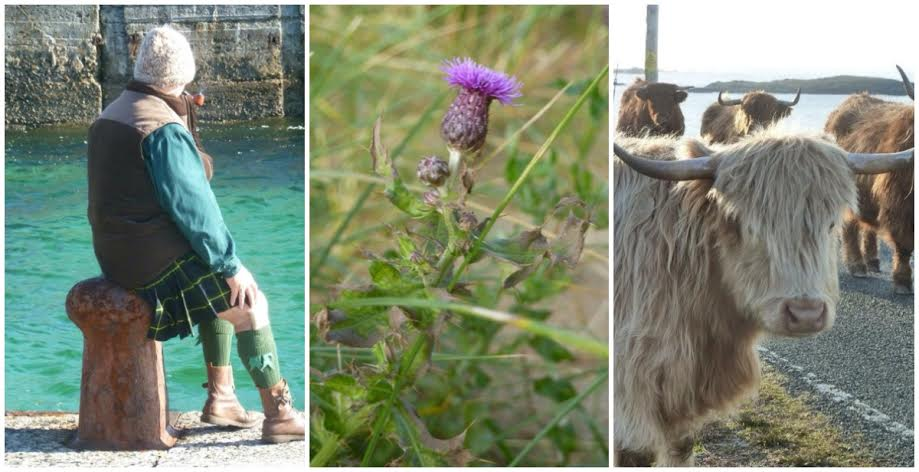 scottish man kilt purple thistle highland cow scotland scottishisms scots language western isles isle of lewis outer hebrides island life freckles and all blog