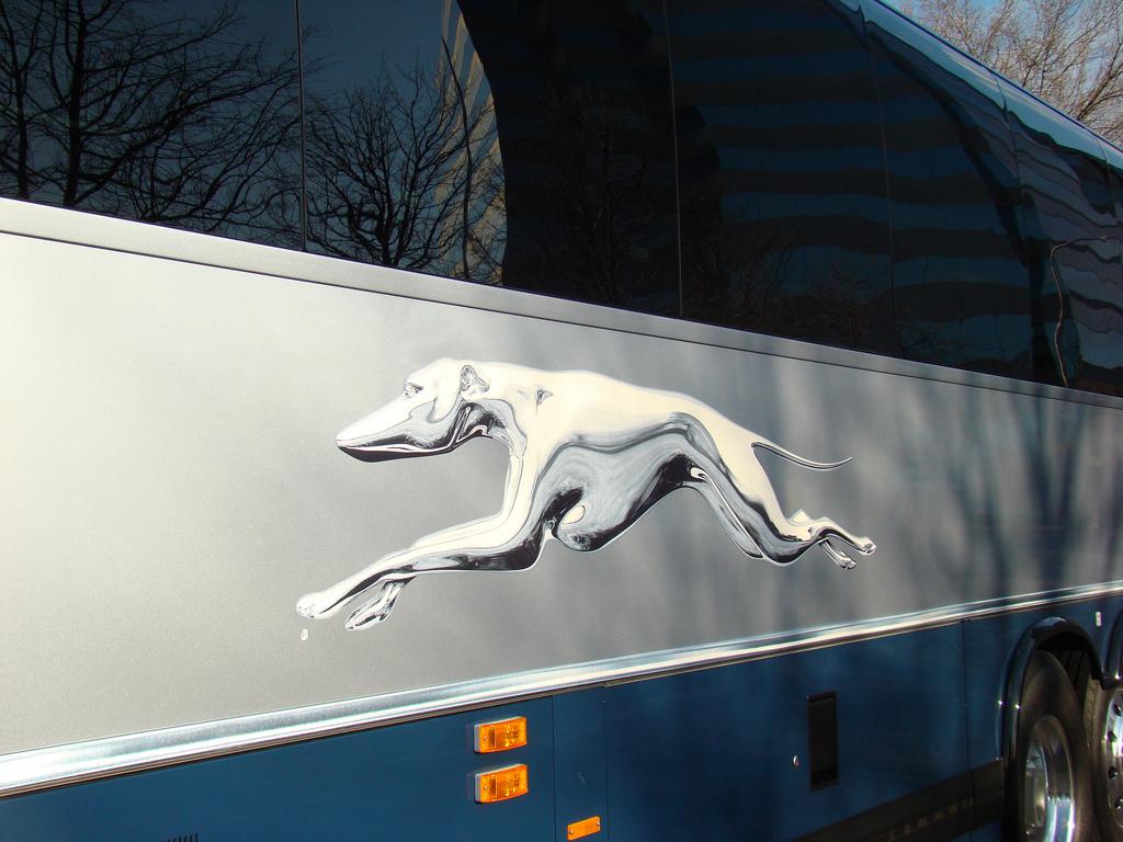 Premium Greyhound Expr...