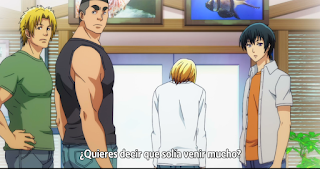 ver Grand Blue anime 2 sub español mega mediafire