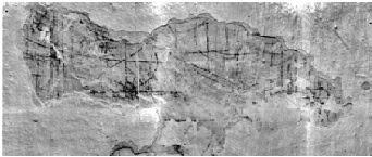«ΟΙ ΤΟΙΧΟΙ ΠΟΥ ΜΙΛAΝE»: Παρουσίαση μελέτης αποκάλυψης γραφημάτων  στο σπίτι - Μουσείο του Γιαννούλη Χαλεπά στον Πύργο της Τήνου