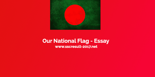 Our National Flag - Essay