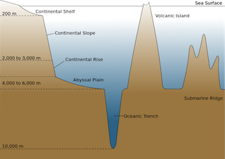 A view from the bog abyssal plain definition facts for On the floor meaning
